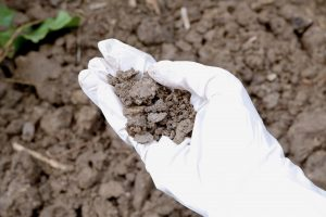 Environmental Soil Testing